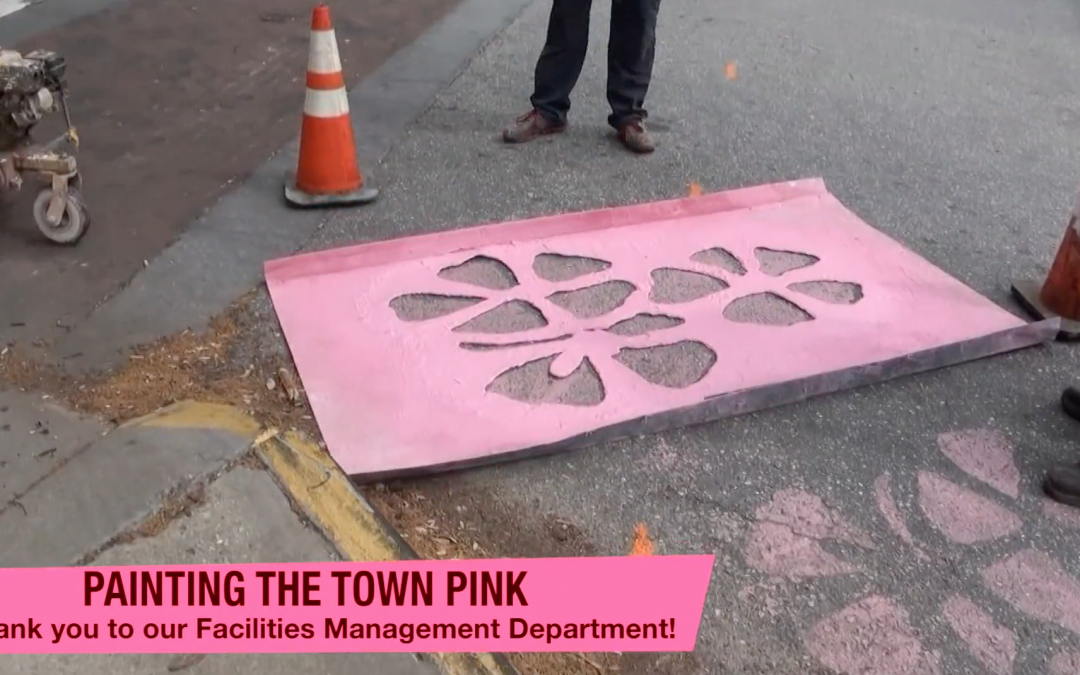Painting the town pink