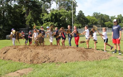 New fields, concessions, splash pad coming to Freedom Park