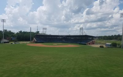 President chosen for new Macon-Bibb baseball team
